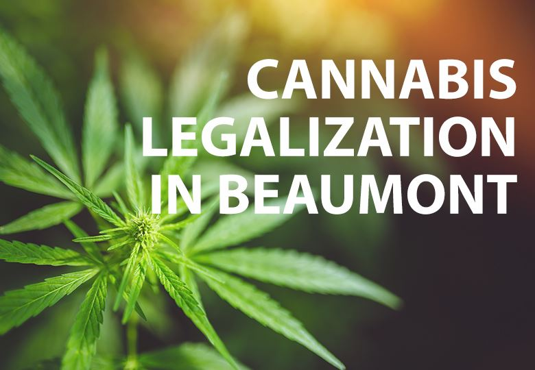 Cannabis In Beaumont