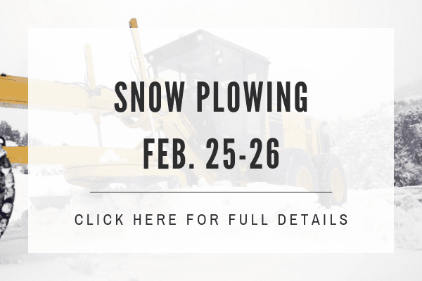 Snow Removal Website Flash